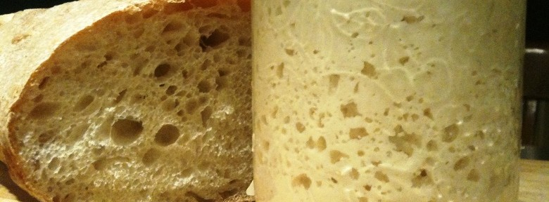 Sourdough – A Miracle of Life?