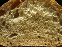 "The ""Crumb"" is the texture of the bread inside"