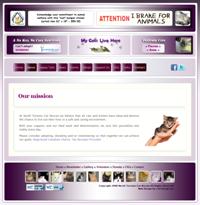 NTCR Website, designed by Sunny Balanga